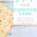Jesus the Passover Lamb - Understanding Passover for Christian Families 1