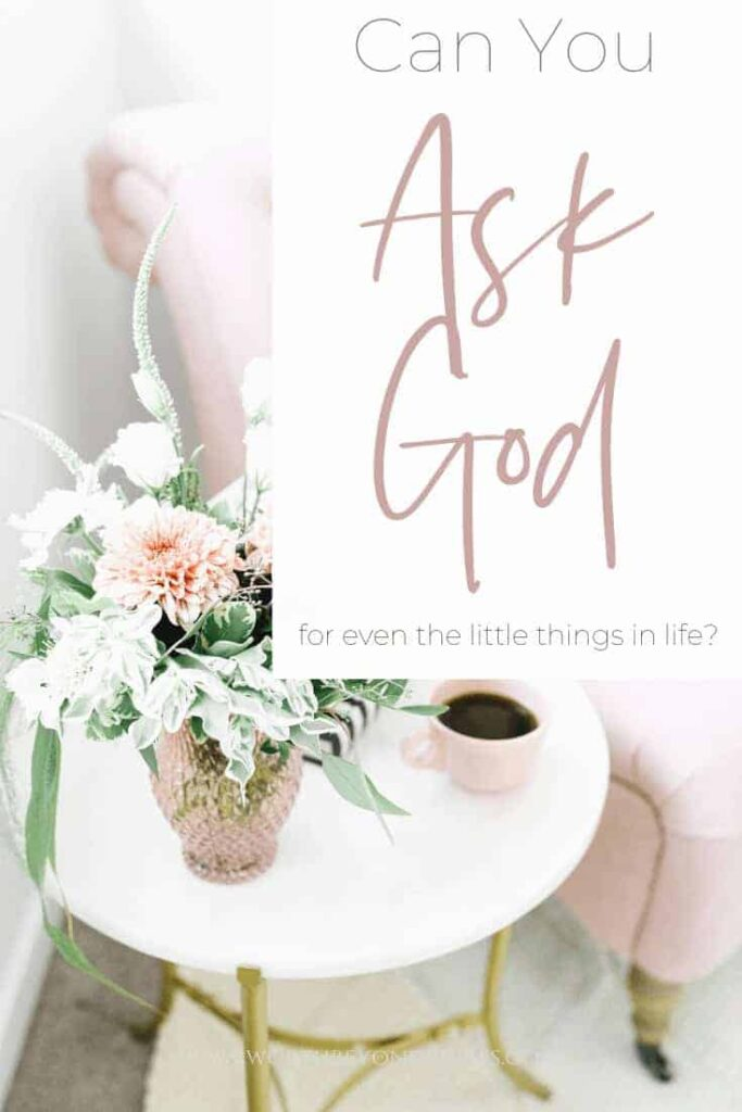 Can You Ask God Even For the Little Things in Life? an image of pink flowers in a white room