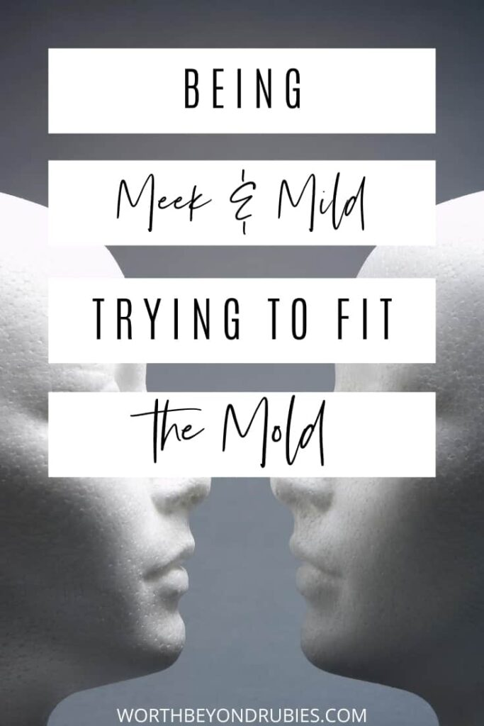 An image of two mannequins facing eachother against a gray backdrop and text that says Meek and Mild - Trying to Fit the Mold