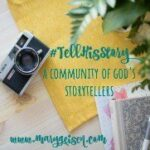 Blog Link Up Mary Geisen