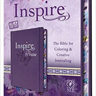 Large Print Bibles for the Visually Impaired - With Bible Journaling Tips! 4