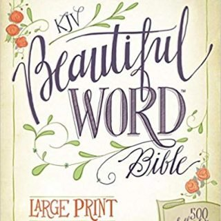 Large Print Bibles for the Visually Impaired - With Bible Journaling Tips! 5