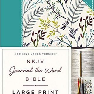 Large Print Bibles for the Visually Impaired - With Bible Journaling Tips! 8