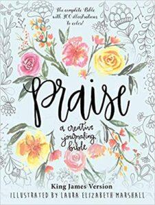 Praise - A Creative Journaling Bible