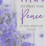 Scriptures on peace to pray in the midst of chaos - purple flowers on a wooden flat lay