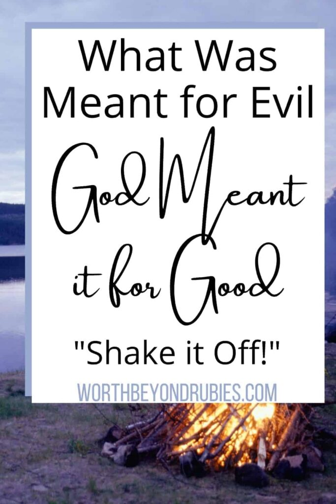 """An image of a campfire behind a white overlay that says What The Enemy Meant For Evil, God Meant It For Good - """"Shake It Off"""" in Faith"""