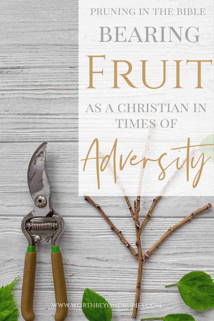 Bearing fruit as a Christian in times of adversity - Pruning in the Bible : A wooden table with a set of pruning shears on it and a branch