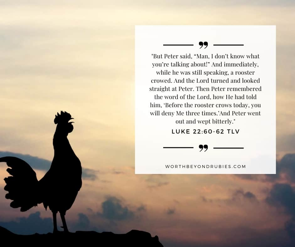An image of a rooster crowing at dawn and Luke 22:60-62 quoted from Tree of Life