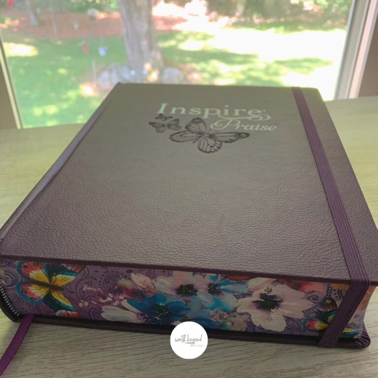 Bible Review of the New Inspire Journaling Bible