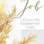Bible Study of Job and His Awesome Faith - I Know My Redeemer Lives 1