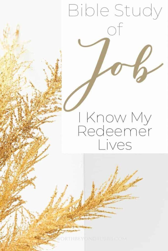 An image of wheat and a text overlay that says Bible Study of Job - My Redeemer Lives