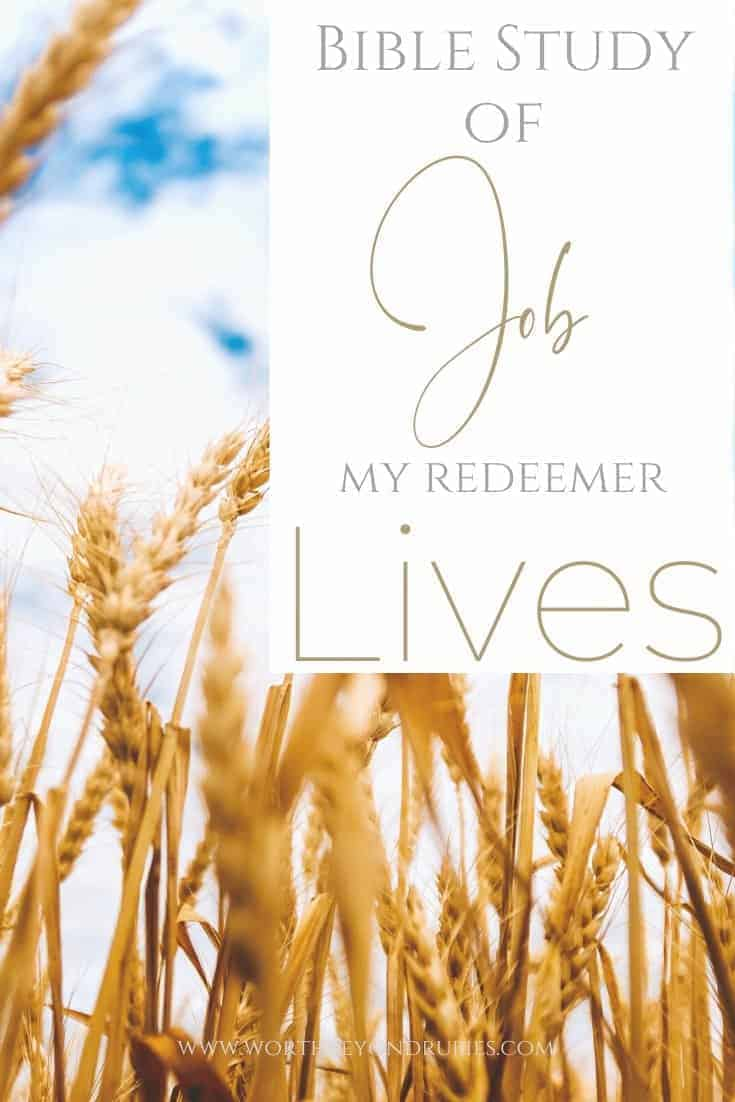 A field of wheat and a text overlay that says Bible Study of Job - My Redeemer Lives