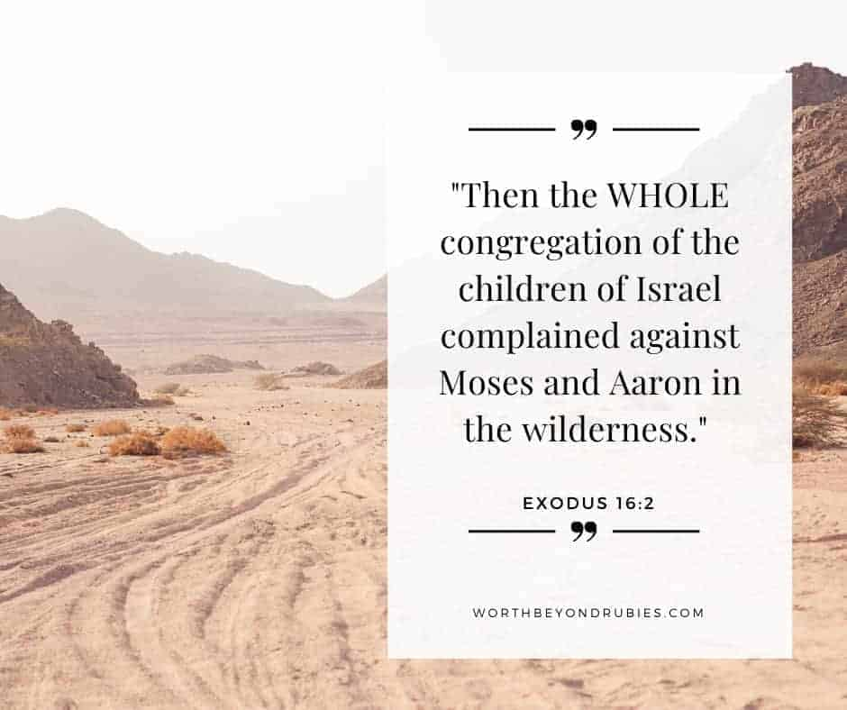 An image of the desert with Exodus 16:2 quoted - How to Stop Dwelling on the Past