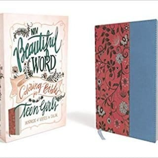 10 Best Teen Bibles for the Precious Girls in Your Life 7
