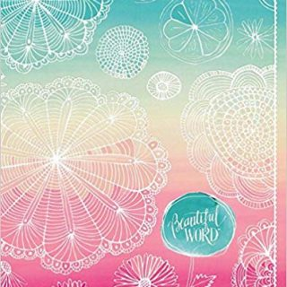 10 Best Teen Bibles for the Precious Girls in Your Life 8