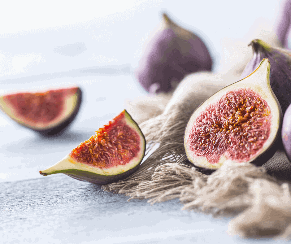 Why Did Jesus Curse the Fig Tree? The Fascinating Answer!