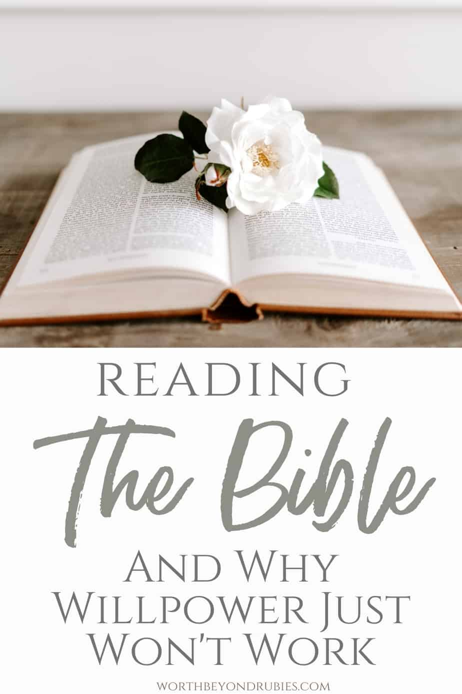 An image of a Bible open on a table with a flower on it and text that says Reading the Bible and Why Willpower Just Won't Work