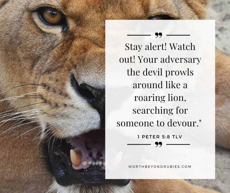 A roaring line and 1 Peter 5:8 quoted - Spiritual Attack