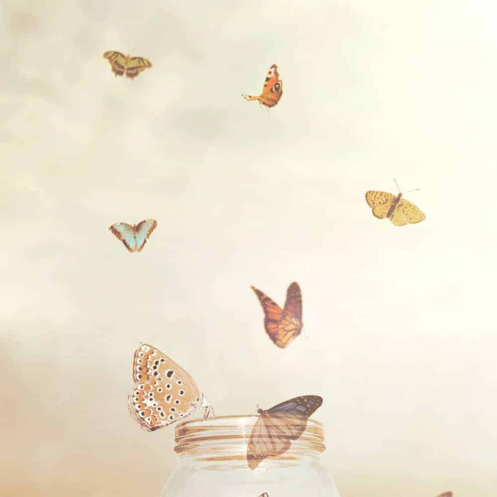 An image of small butterflies flying out of a mason jar and text that says Freedom in the Bible - Experiencing True Freedom in God