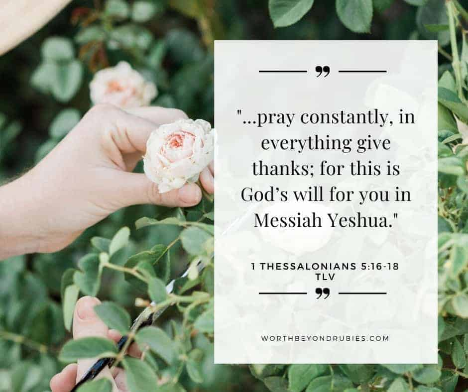 An image of a woman's hand holding a pink rose and 1 Thessalonians 5:16-18 quoted on an overlay from the Tree of Life version - Why You Should Not Pray for Happiness