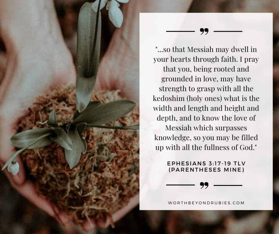 Person holding white flowers in soil in her hands and text overlay with Ephesians 3:17-19 quoted from Tree of Life Version  for post How to Get Closer to God - Becoming Rooted in Christ