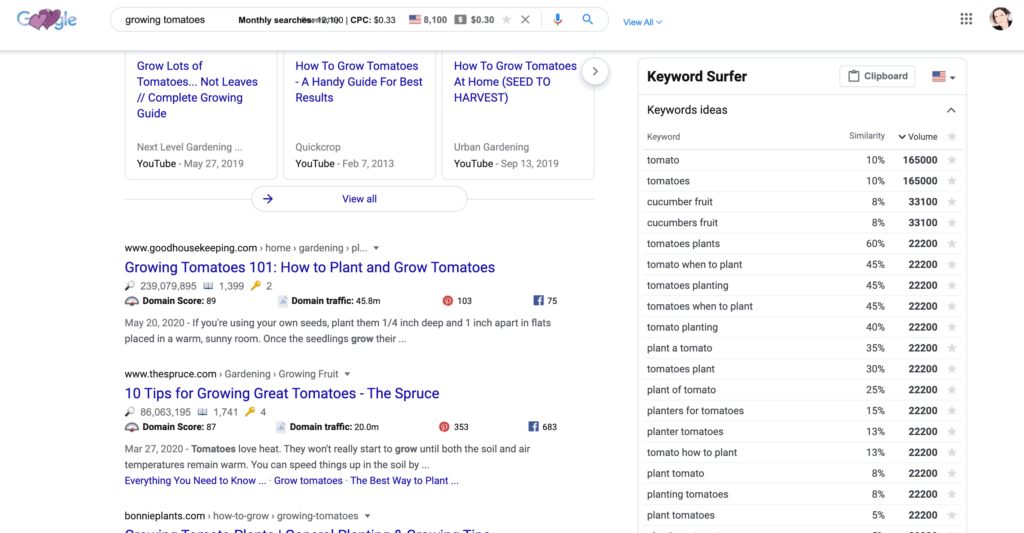 Screenshot of keyword surfer used in Google for the keyword growing tomatoes