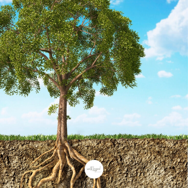 Learn How to Get Closer to God – Becoming Rooted in Christ