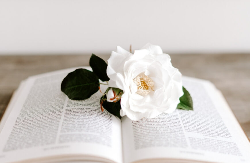 Reading the Bible – Why Willpower Just Won't Work